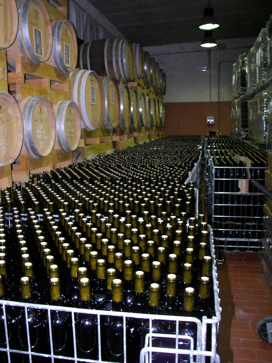 cantina-vino-basile